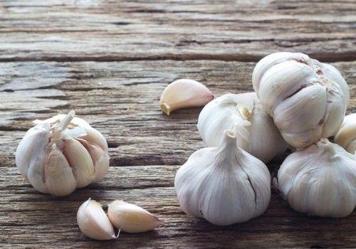 45mm Fresh Garlic