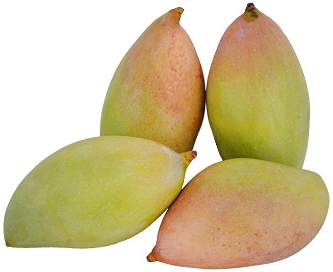 Fresh Totapuri Mango
