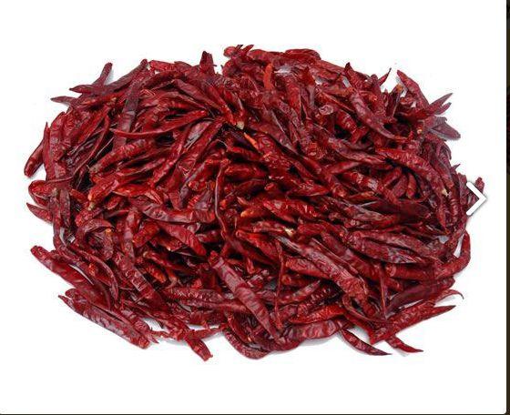 S17 Teja Dry Red Chilli