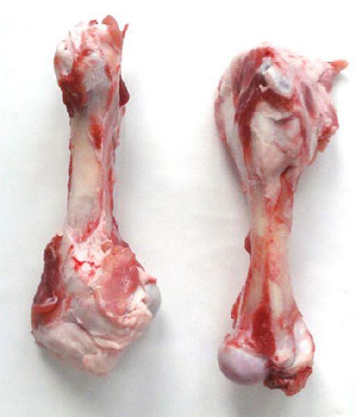 Frozen Pork Humerus Bone
