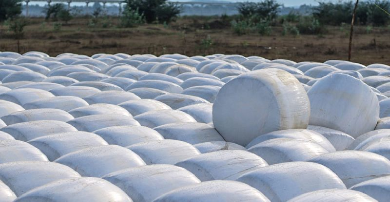 Silage Bale