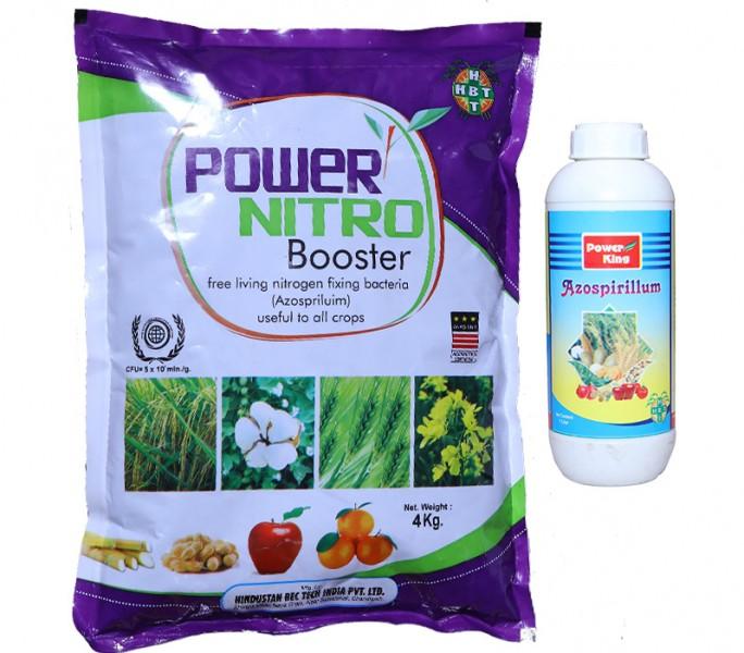 Azospirillum Bio Fertilizer