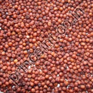 Finger Millets