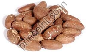 Ojitra Herbal Seeds