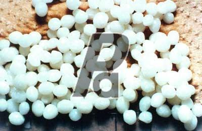 Calcium Alginate