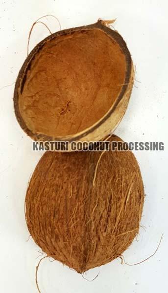 Coconut Shell Halves