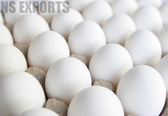 White Eggs 02