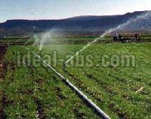 Orchard Irrigation System
