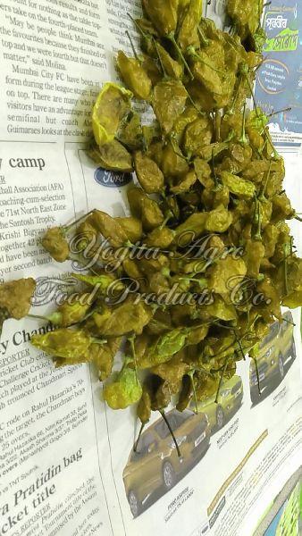 Dried Green Chilli 02