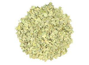Organic Neem Herbs