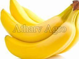 Fresh Banana 01