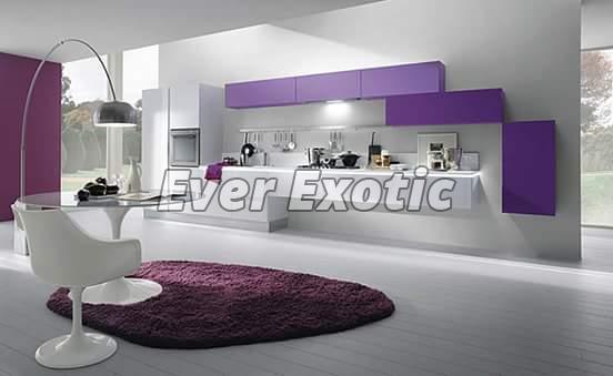Modular Kitchen Cabinet 10