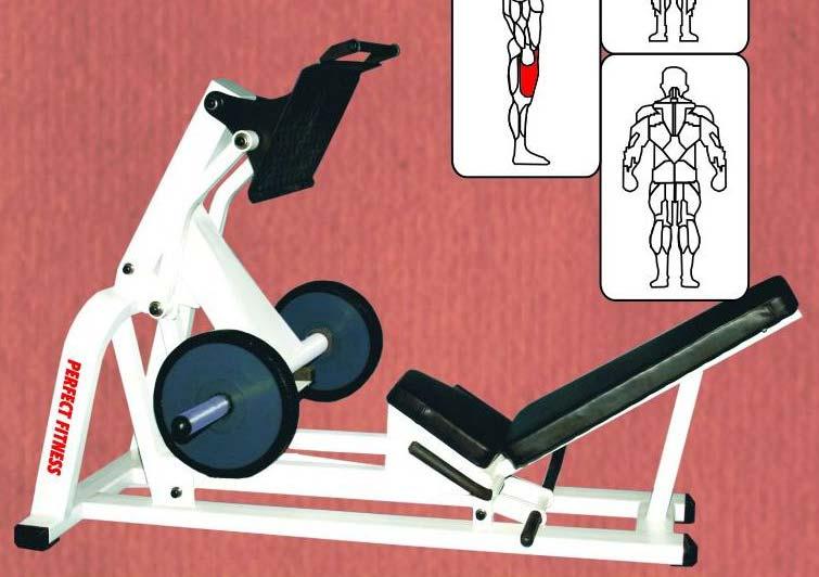 Power Leg Press