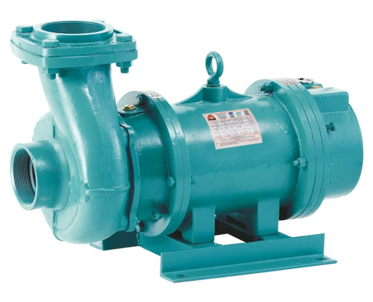 Duke Regal Open Well Submersible Pump