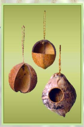 Coconut Shell Bird Feeders