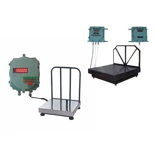 Digital Platform Weighing Scale 02