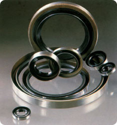 Oil Rubber Seals