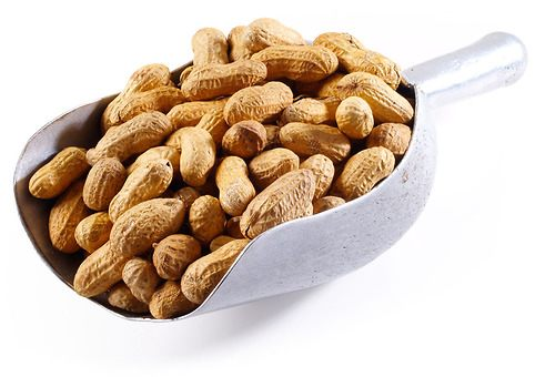 Roasted Shelled Groundnuts