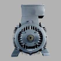 3 Phase Squirrel Cage Induction Motor (160M-355L)