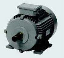 3 Phase Squirrel Cage Induction Motor (63-132M)