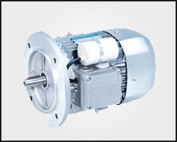 Bonfiglioli Single Phase Motor