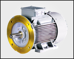Siemens Standard Motor