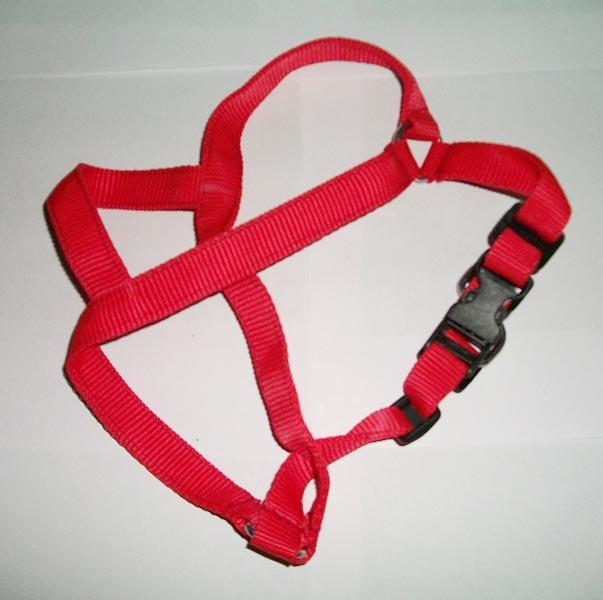 Dog Body Belts 01