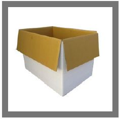 HDPE Corrugated Box