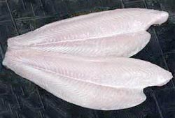 Frozen Basa Fish