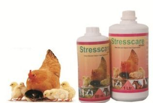 Stresscare Poultry Feed Supplement
