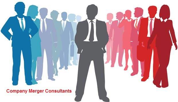 Company Merger Consultant