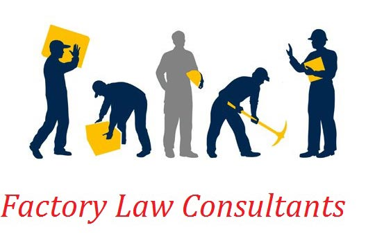 Factory Law Consultant