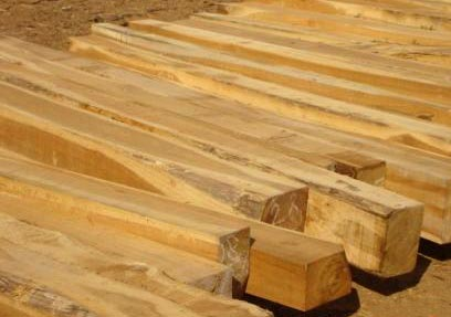 Teak Wood Teak Wood Logs Manufacturers Suppliers In Gujarat