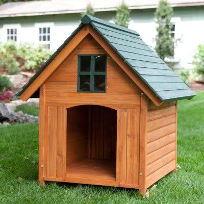 Dog Pet House 01