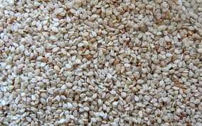 White Hulled Sesame Seeds