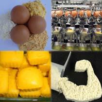 Egg Powder 01