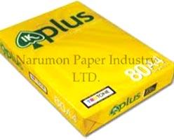 International Paper 03