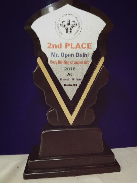 Acrylic Wooden Award 03