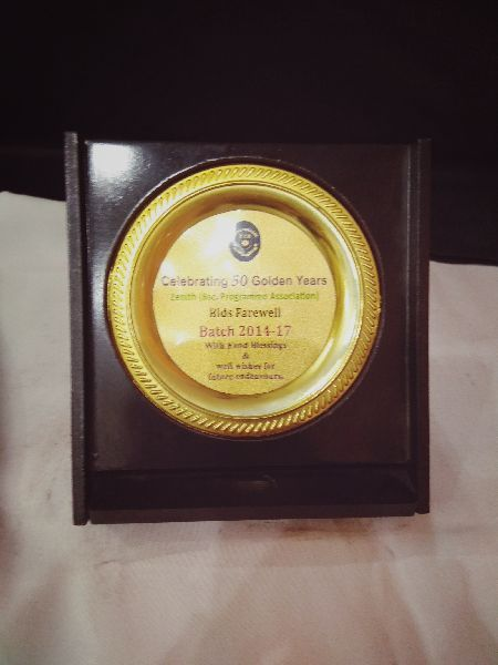 Acrylic Wooden Award 05