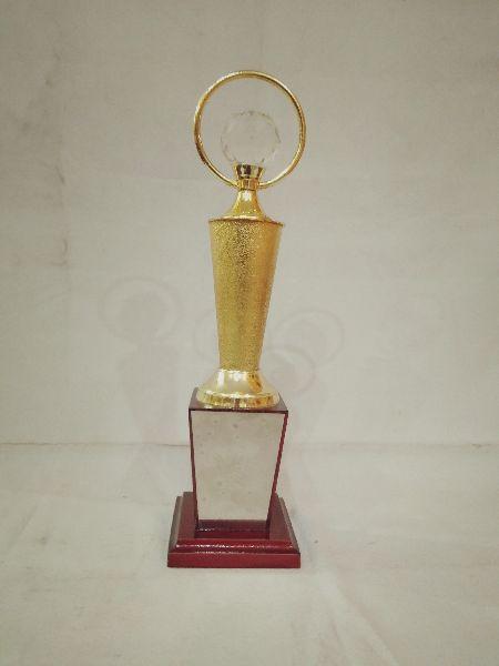 Metal Award 11