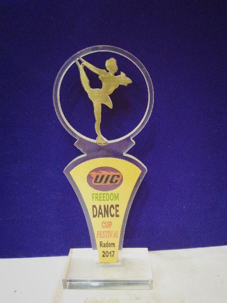Premium Acrylic Award 02