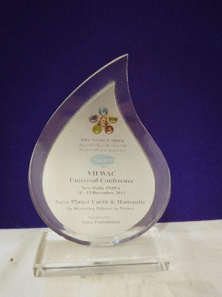 Premium Acrylic Award 03