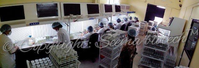 Inside Lab