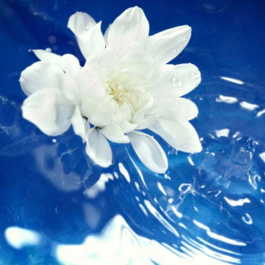 Natural Floral Water