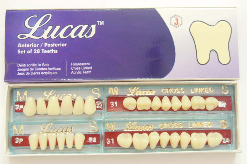 Lucas Teeth Set