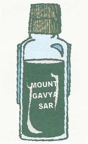 Mount Gavya Sar