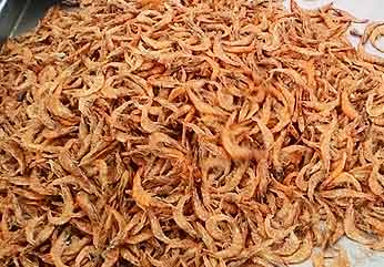 Frozen Dried Shrimp