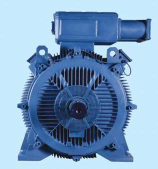 Bharat Electric Motor 01