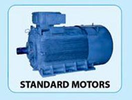 Bharat Electric Motor 02