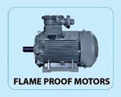 Bharat Electric Motor 03